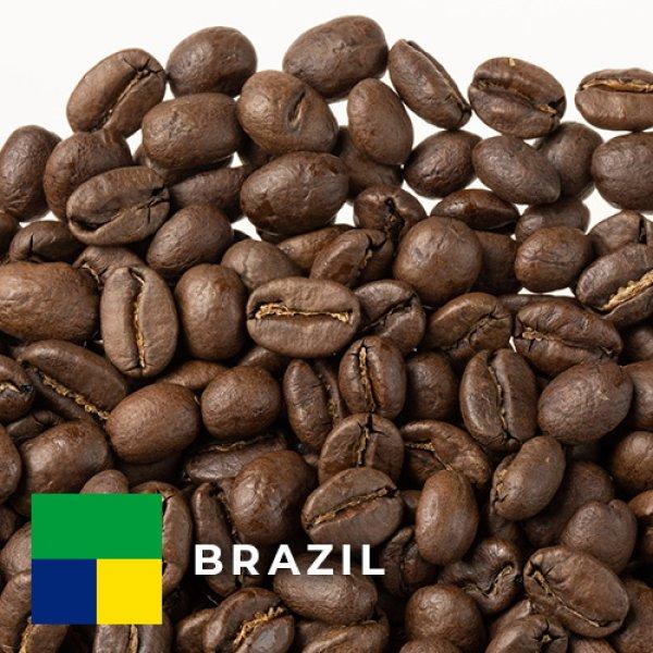 画像1: ブラジル ファゼンダ カルメリート中煎り (1)