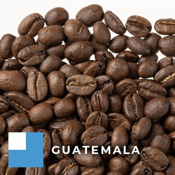 画像1: グアテマラ アンティグア サンタクララ 中煎り (1)