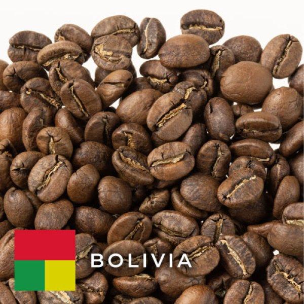 画像1: ボリビア リコマ カツアイ ウォッシュド (1)